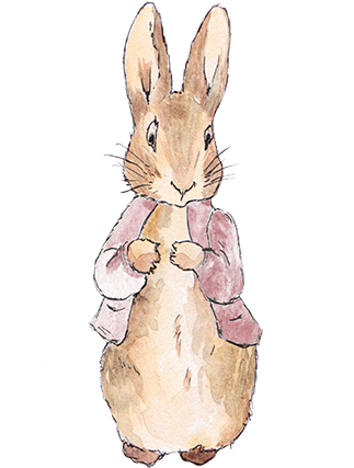 Collection Peter Rabbit